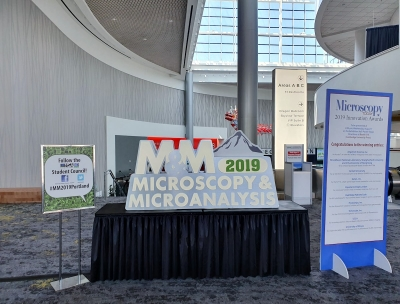 Microscopy-and-Microanalysis-2019-01